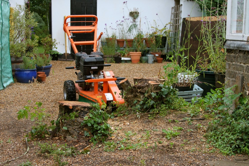 Stump Grinding in Margate